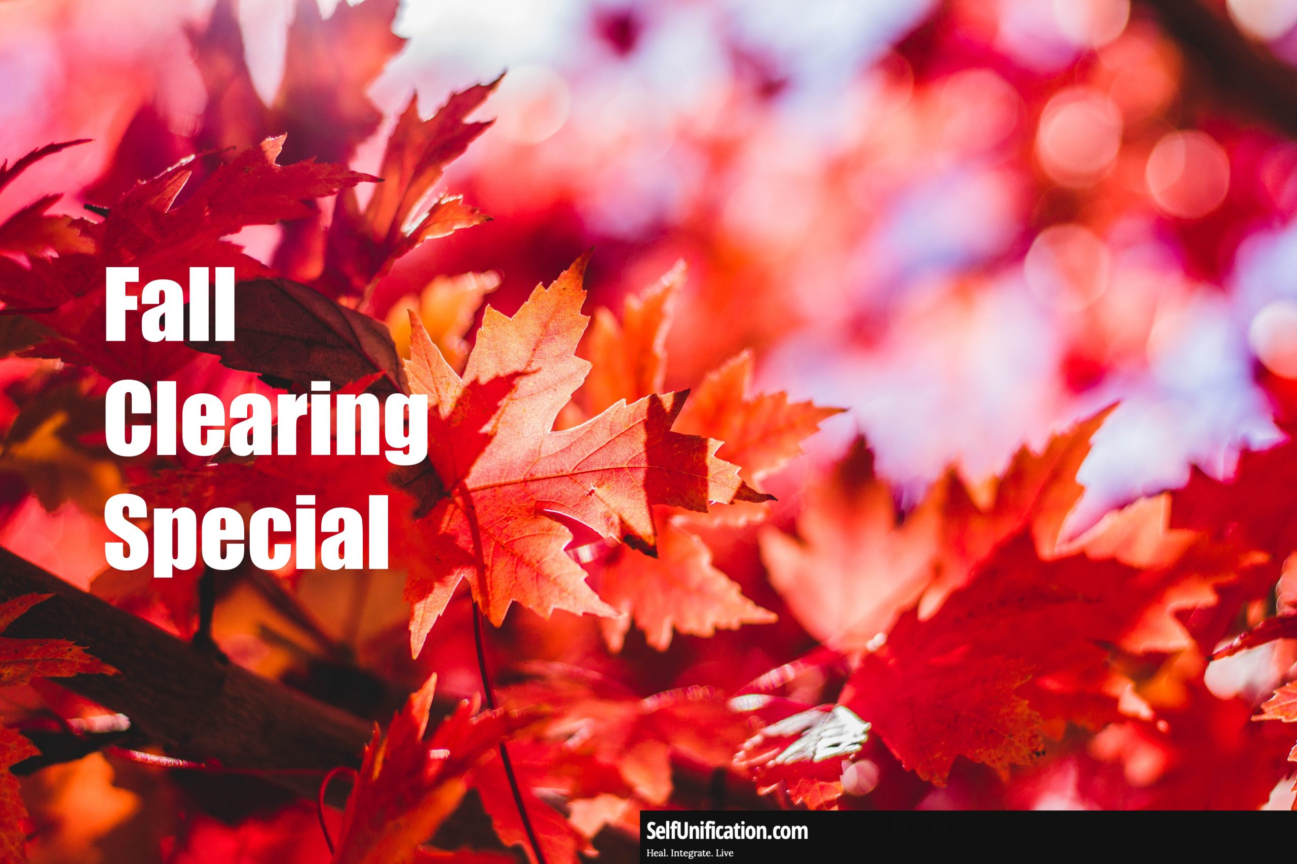 Fall Clearing Special Until Oct. 8th, 2021